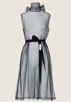 Dorothee Schumacher Tulle Roll Neck Dress Dresses