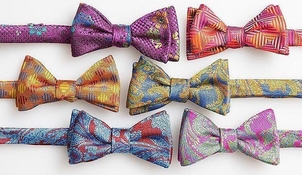 Bow Tie Day Everyday Accessories