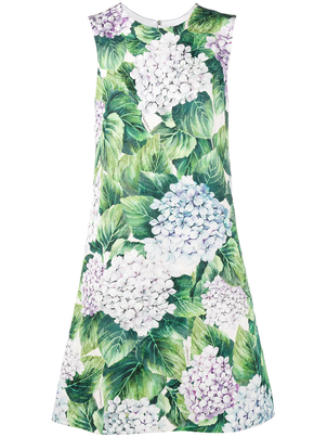Dolce & Gabbana Hydrangea Sleeveless Dress Dresses