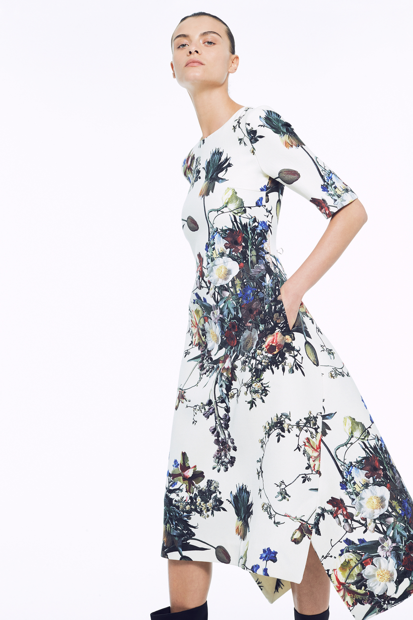 Adam Lippes Printed Trapeze Dress Dresses