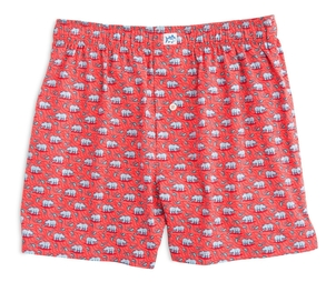 Southern Tide Bearly Hungry Boxer Accessories