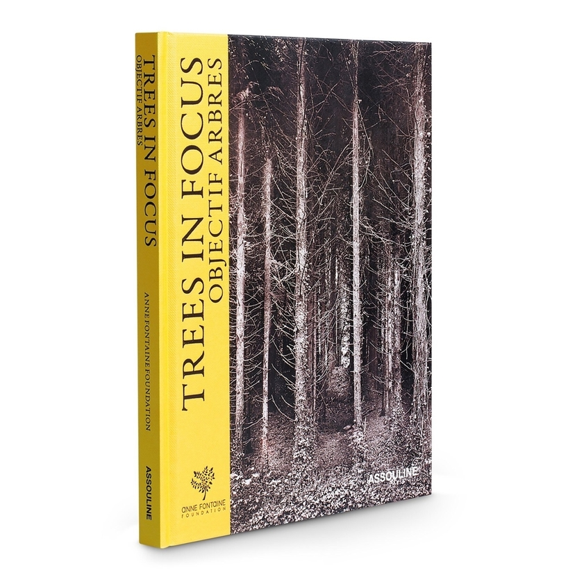 Assouline  Trees in Focus  Home decor