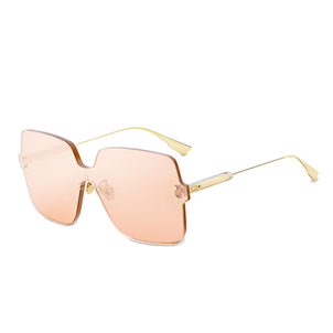 Christian Dior DiorColorQuake1 Gold Sunglasses Accessories